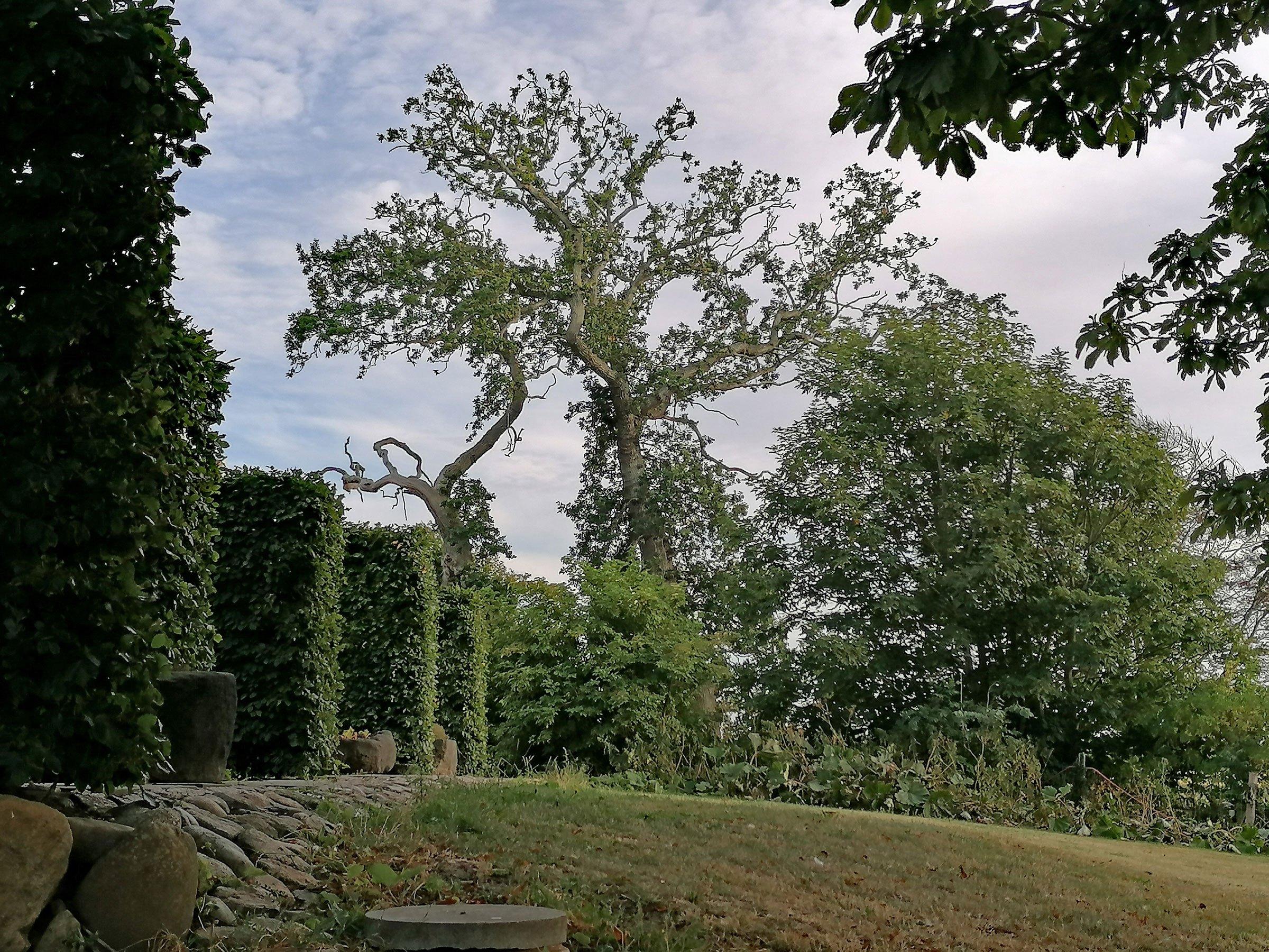 1_Dragsholm-Castle_09.08.2020